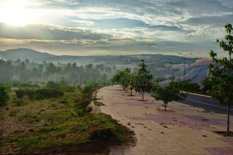 vietnam Strand Eidechse stockbilder