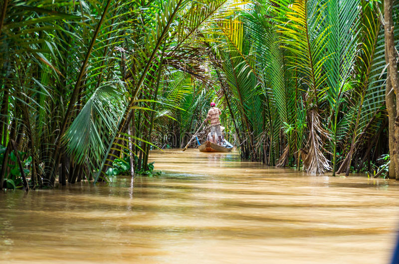 Vietnamese boatman in the Mekong Delta. A Vietnamese boatman on a canal in Ben Tre province in the Mekong Delta region of Vietnam, rowing a traditional wooden stock photos