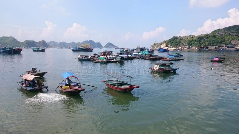 Vietnamese fisher boats in the bay in Cat Ba. A lot of fisher ships, Fishing, traditional boats stock image