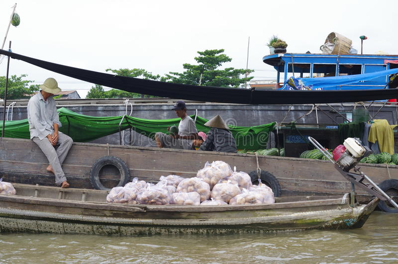 Vietnamese Mekong Delta royalty-vrije stock fotografie
