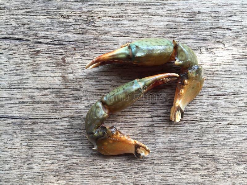 The Vietnamese mud crab, Scylla serrata. Vietnamese mud crab, Scylla serrata royalty free stock images