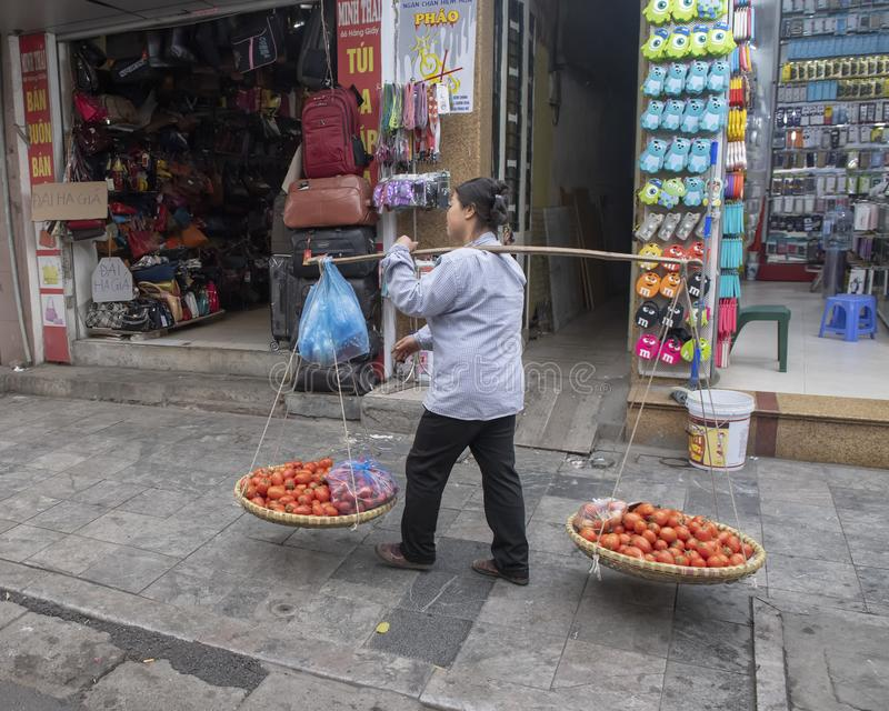 Vietnamese street vendor in Hanoi, with bamboo frame over shoulder carrying two big baskets of tomatoes for sale stock photo