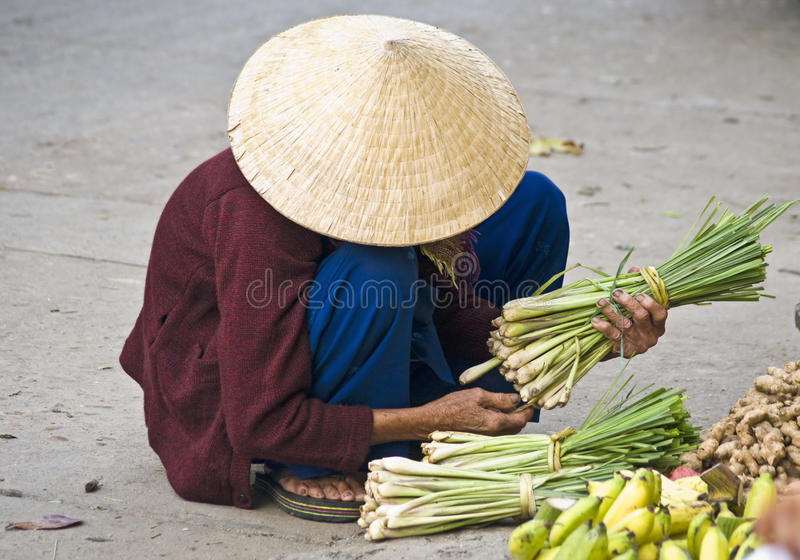 A vietnamese street vendor. Hoi An, Vietnam. royalty free stock photos