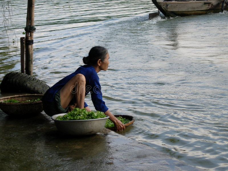 Vietnamese Woman stock photo
