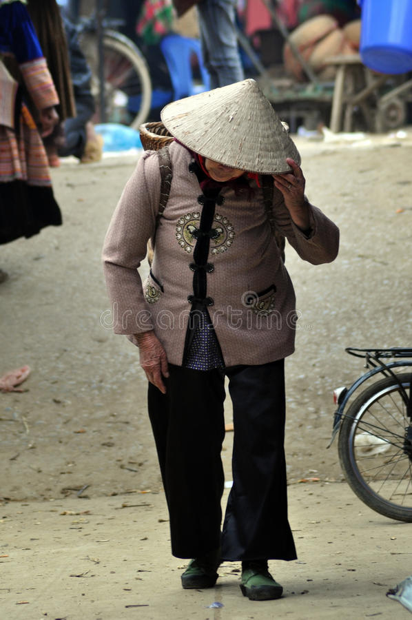 Vietnamese woman with a Vietnamese hat. SAPA, FEB 22, Unidentified sellers of the flower H'mong indigenous tribe in the local market. H'mong tribe is one of the stock photography