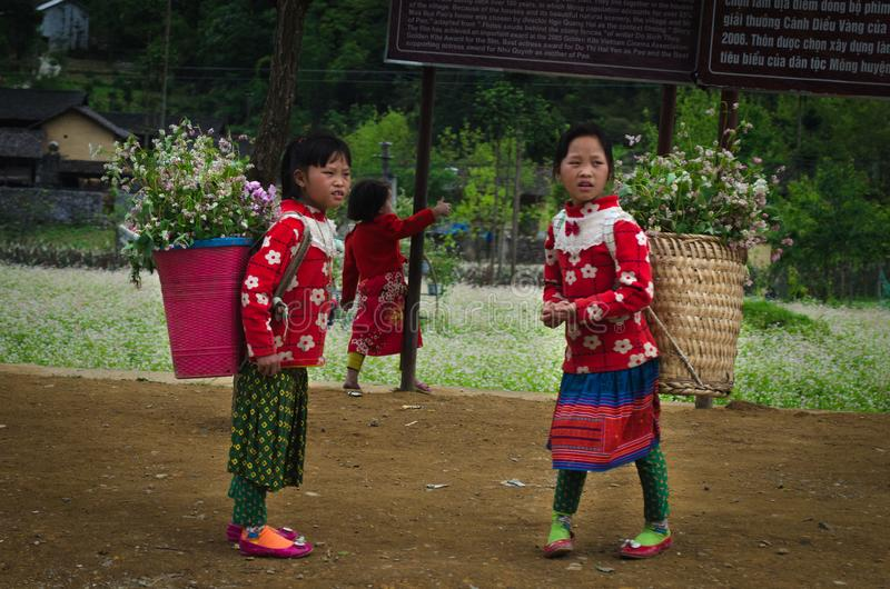 Vietnamese young girls in traditional Vietnamese clothes in Northern Vietnam, province Ha Giang. stock photo