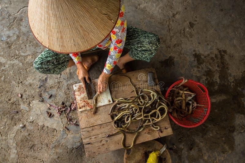 Vietnamesische Frau schneidet Aale lizenzfreie stockfotografie