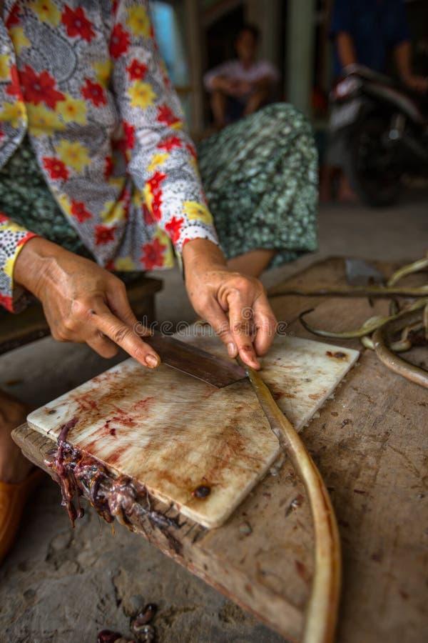 Vietnamesische Frau schneidet Aale lizenzfreie stockfotos