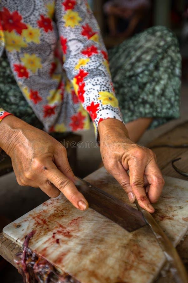 Vietnamesische Frau schneidet Aale lizenzfreie stockbilder