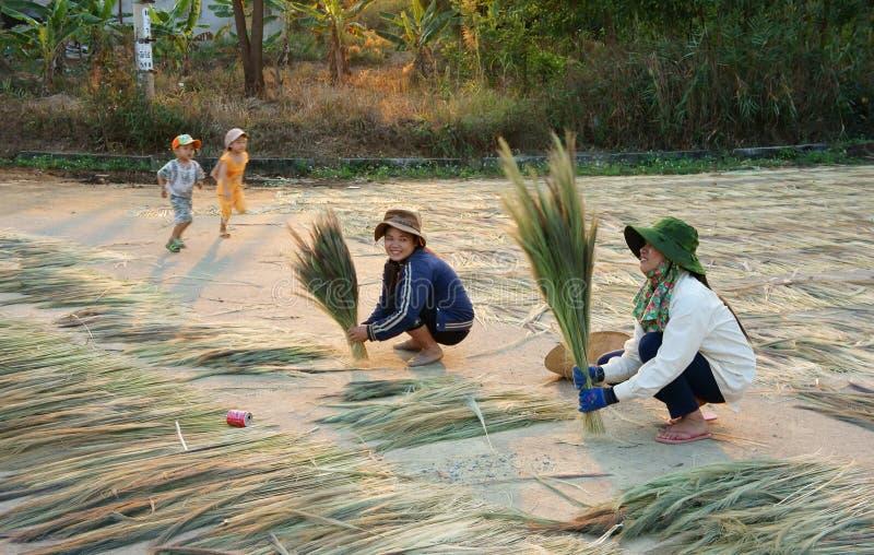 Vietnamesische Jungearbeit an Vietnam-Landschaft lizenzfreies stockfoto