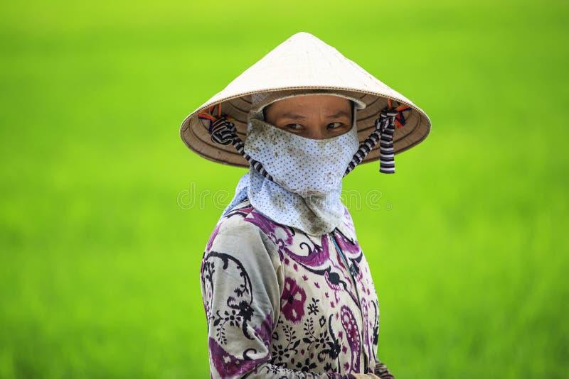 Vietnamesischer Landwirt lizenzfreies stockbild