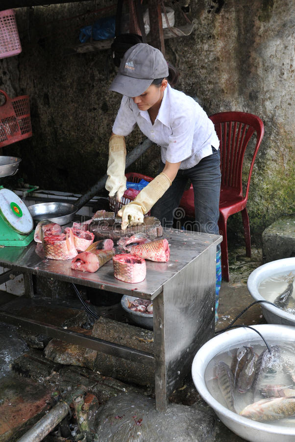 Vietnamesisk funktionsduglig kvinna royaltyfri foto
