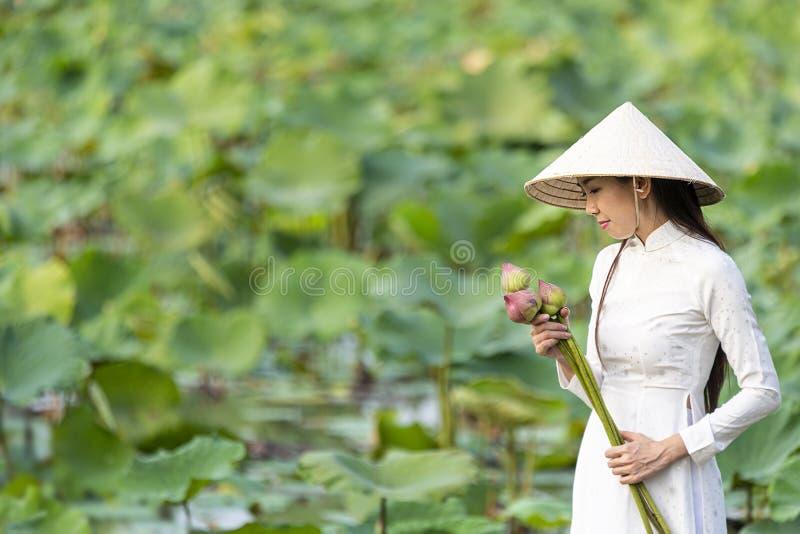 Vietnamesisk kvinnlig p? ett tr?fartyg som samlar lotusblommablommor Asiatiska kvinnor som mot efterkrav sitter p? tr?lotusblomma royaltyfri foto