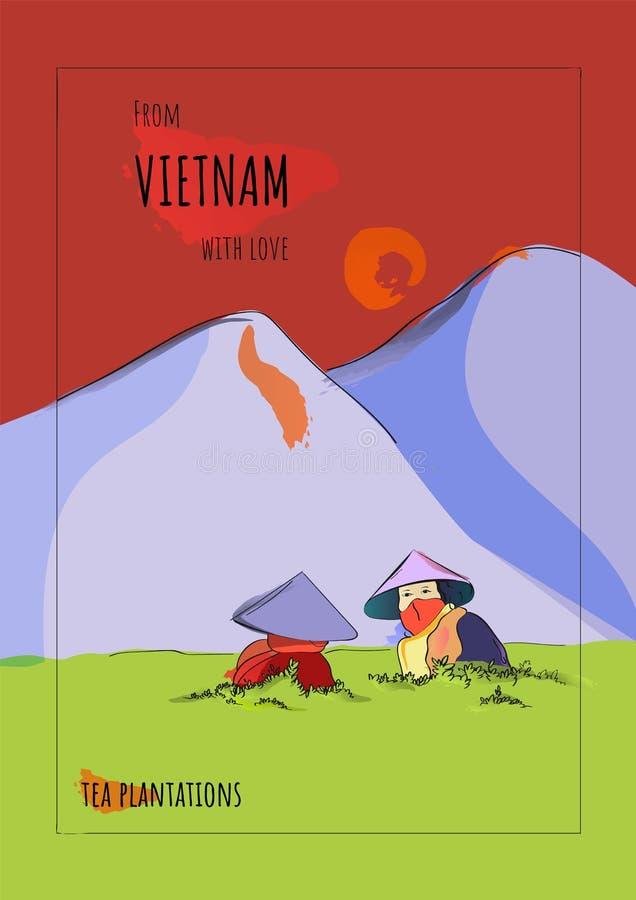 Vietnamesiska kvinnor samlar te i högländerna vykort royaltyfri illustrationer