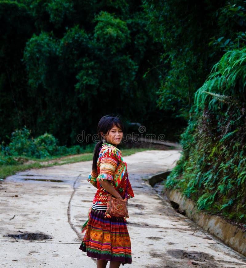 Vietnamesiska små flickor från den Hmong stammen royaltyfri foto