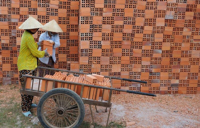 vietnamesiskt fungera för kvinnor royaltyfria foton