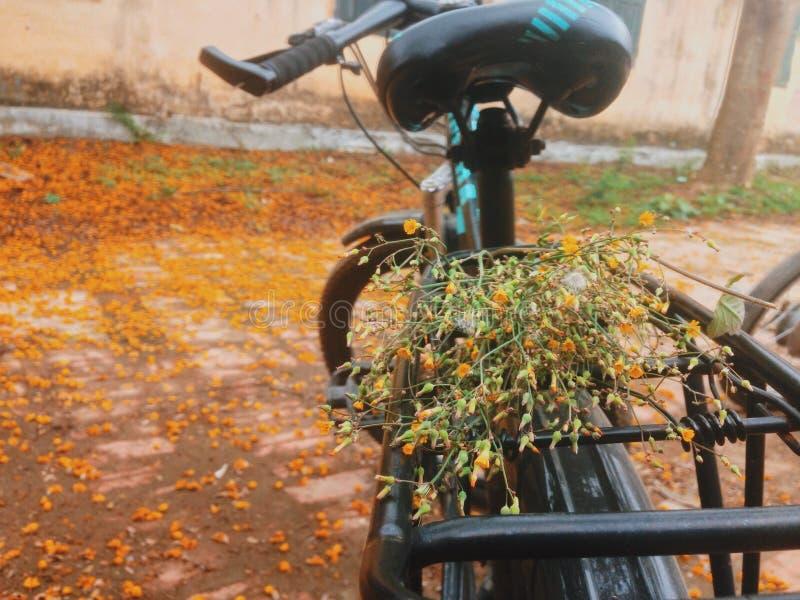 vietnamita imágenes de archivo libres de regalías