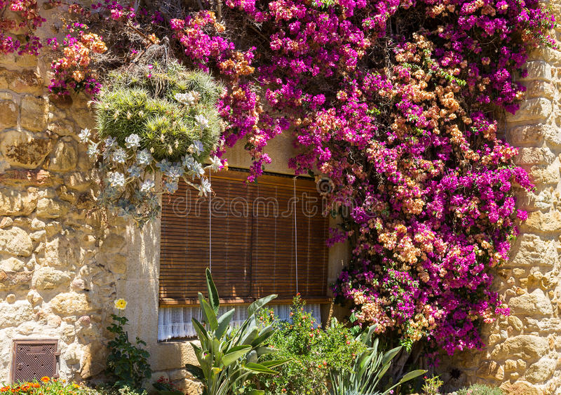 Vieux abat-jour dans la fenêtre photos stock