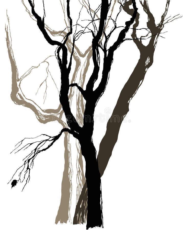 Vieux arbres illustration stock