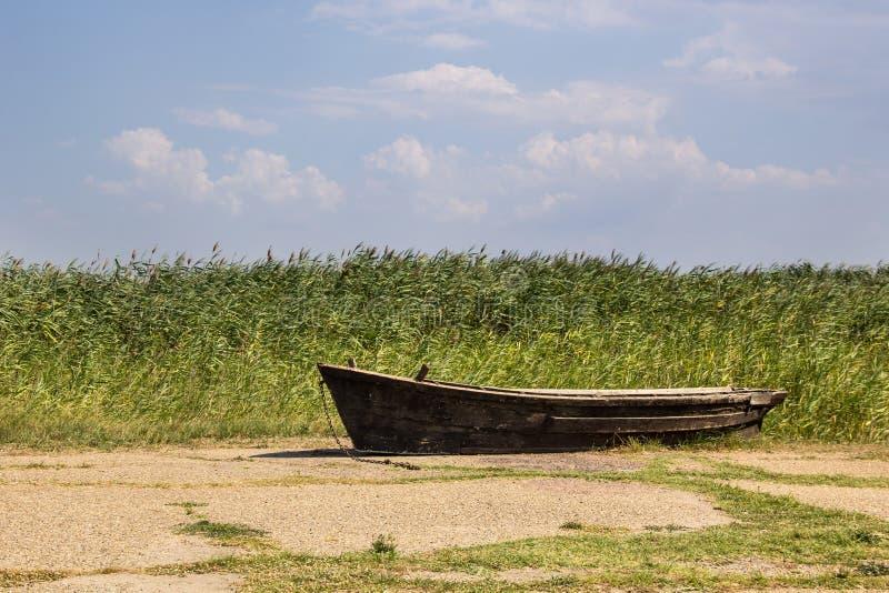 Vieux bateau de pêche sur l'asphalte sur le fond des roseaux photos stock