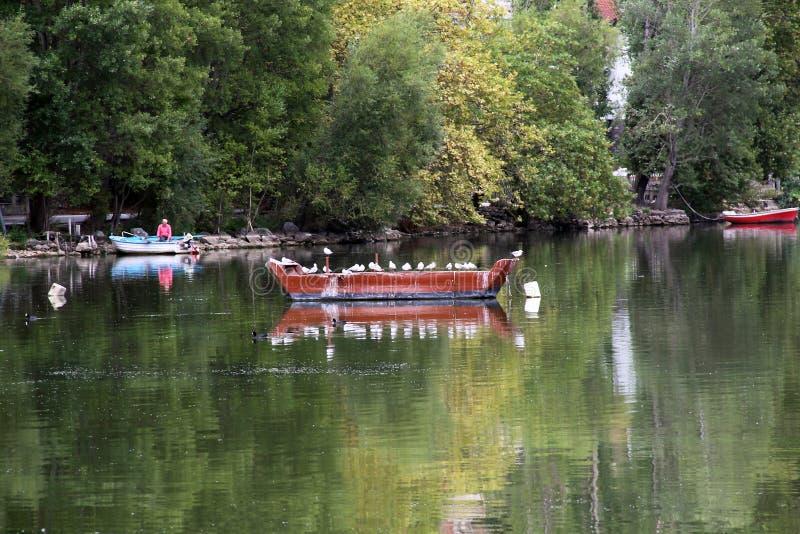 Vieux bateau sur le lac Orestiada, Grèce photo stock