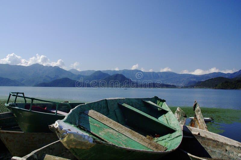 Vieux bateaux de pêche au skadarsko de lac dans le montengro image libre de droits