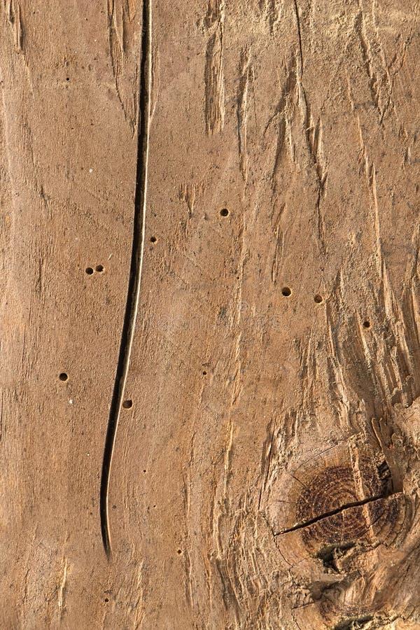 Vieux bois de construction, bois, fond photo libre de droits