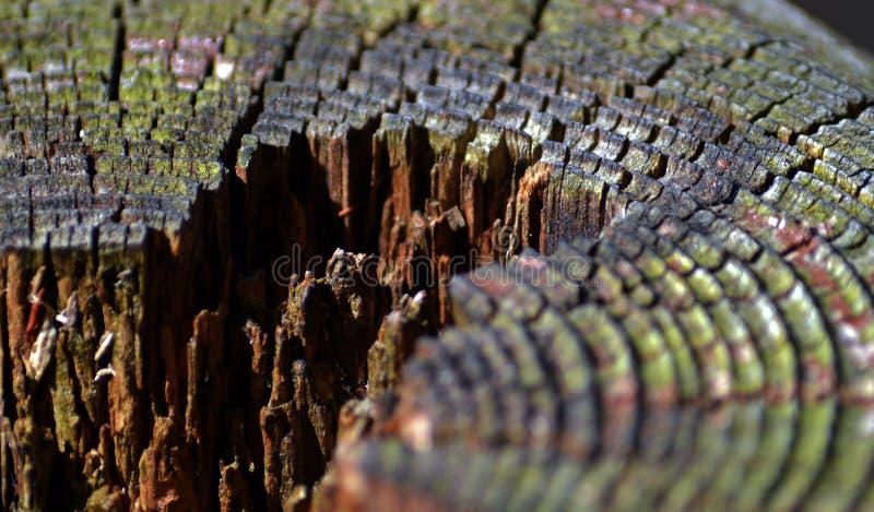 Vieux bois de construction en bois photo stock