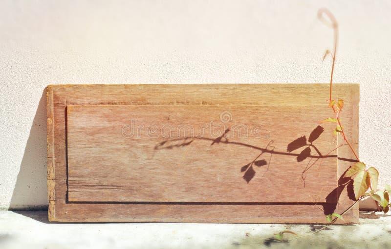 Vieux bois, place, plaque d'identification, brun, fond, mur en béton, en bois, brûlé, pousse avec le soleil lumineux de matin, photographie stock libre de droits
