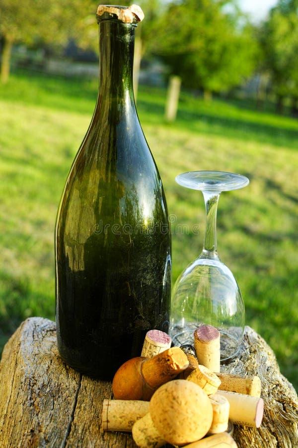 Vieux bouchons de vigne, bouteille de cidre et verre utilisés image libre de droits