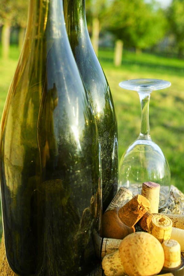 Vieux bouchons de vigne, bouteilles de cidre et verre utilisés photo stock