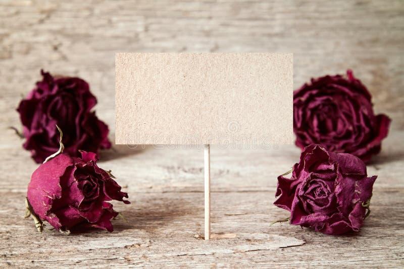 Vieux bourgeons de roses et signe vide image libre de droits