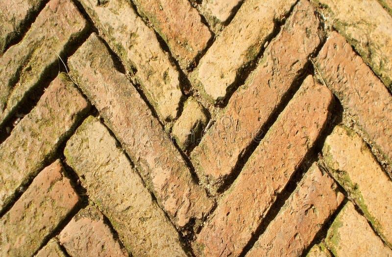 Vieux brik brun sur des modèles de promenade de chemin, backgrond images libres de droits