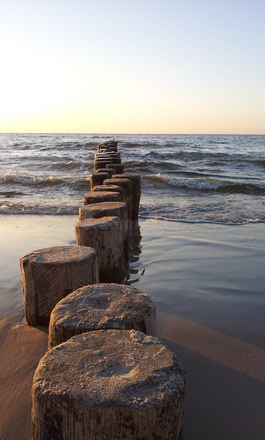 Vieux brise-lames en bois entrant dans la mer baltique images stock