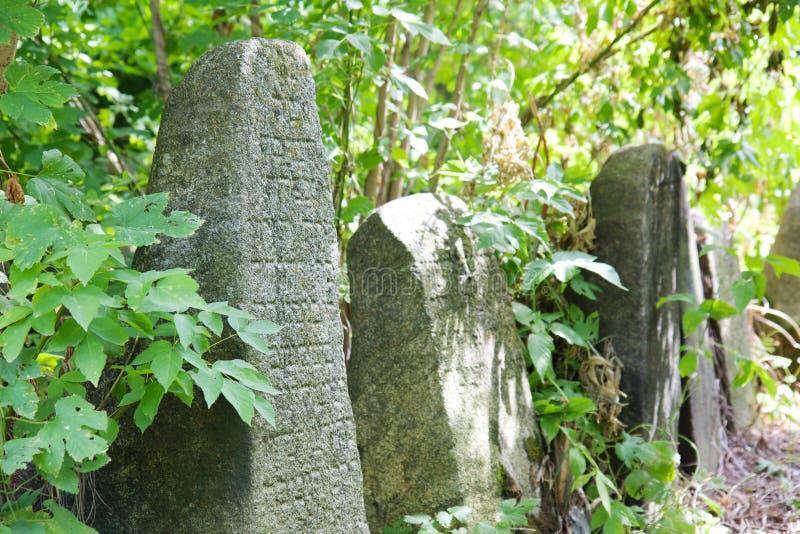 Vieux cementery juif dans Berdychiv, Ukraine images stock
