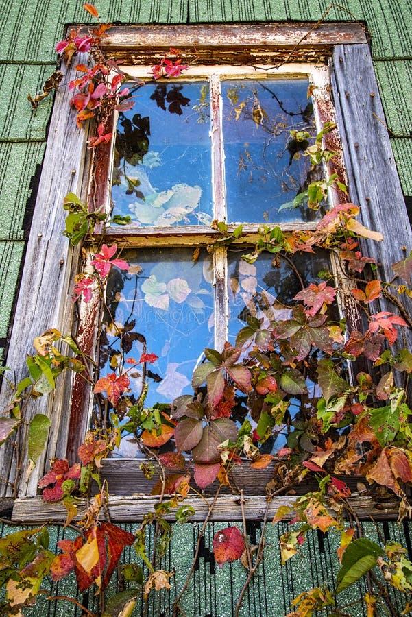 Vieux châssis de fenêtre en bois images libres de droits