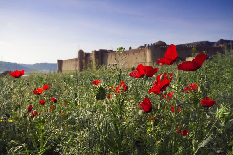 Vieux château dans Kazakhstan oriental Forteresse les nomades Murs et porte de la vieille forteresse faite en en pierre et garnie photo libre de droits