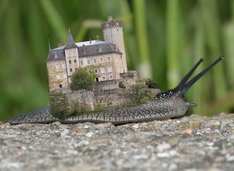 Vieux château sur l'escargot images libres de droits