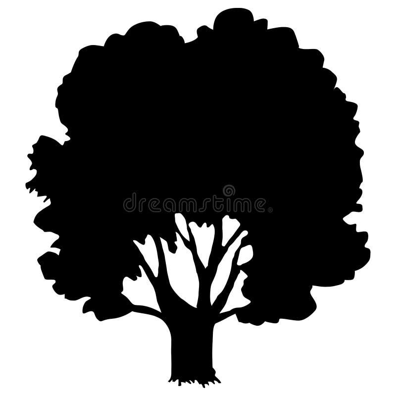 Vieux chêne illustration libre de droits