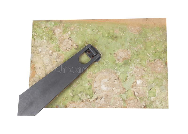 Vieux champignon sale sur le dos du cadre de photo avec le support image libre de droits