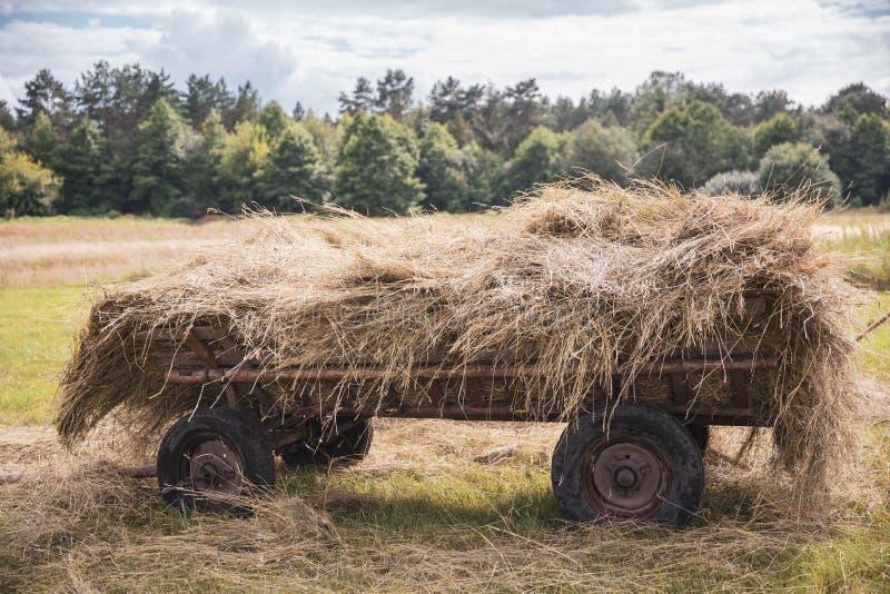 Vieux chariot avec le foin dans le domaine dans la perspective des arbres photo libre de droits