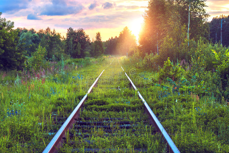 Vieux chemin de fer abandonné envahi avec l'herbe Voie de chemin de fer par le paysage industriel pittoresque de forêt au coucher photo libre de droits