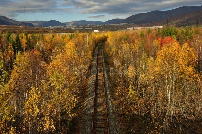 Vieux chemin de fer dans la forêt d'automne et le x28 colorés ; vue de l'above& x29 ; photo stock