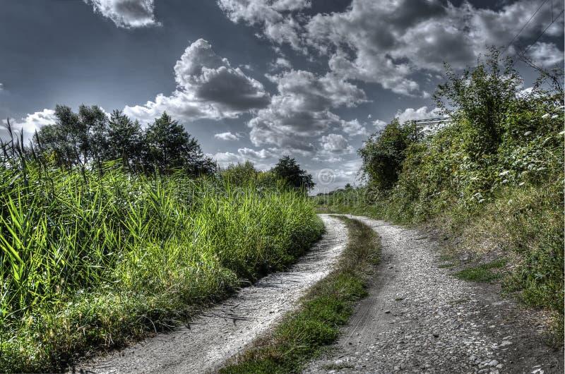 Vieux chemin de nature photos libres de droits