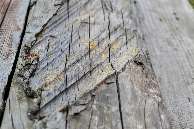 Vieux conseil en bois texturisé pour un fond retraitant dans la distance images libres de droits