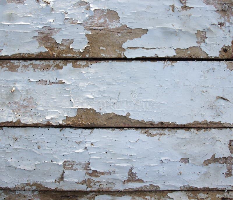 Vieux conseils avec des trous de ver de bois image libre de droits