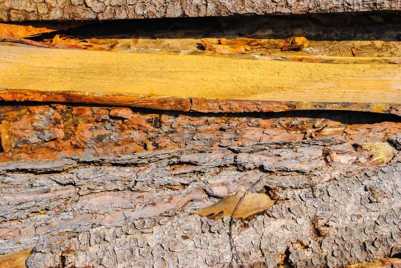 Vieux conseils en bois Modèle naturel, qualitatif Texture photographie stock libre de droits