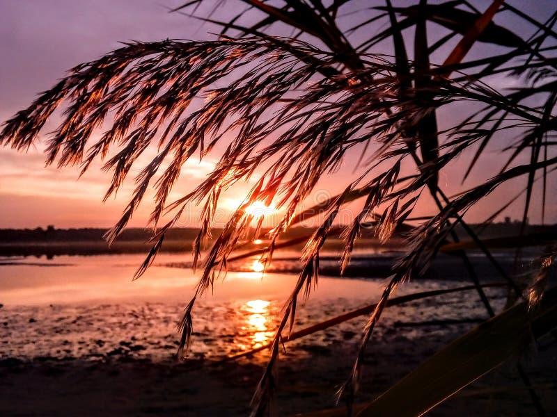 Vieux coucher du soleil de lac tata image libre de droits