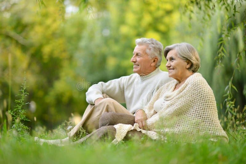 Vieux couples en stationnement image libre de droits