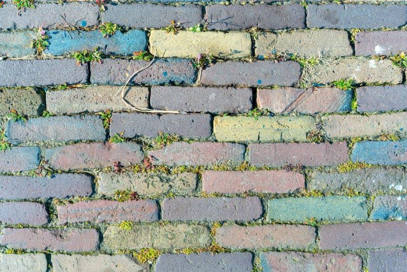 Vieux, cru, pavage multicolore, trottoir traditionnel en Hollande image stock